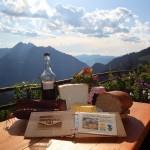 Spüren Sie schon den Geschmack des Salzburger Almsommers?