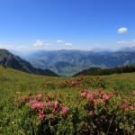 Blick ins Pinzgauer Salzachtal Richtung Zell am See