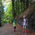 Idyllisch geht´s durch den Buchen-Mischwald