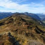 14 kleine Lacken sieht man beim Abstieg vom Gründegg Richtung Saukarkopf