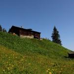Die Harbachalm, eine der ältesten Hütten des Tales