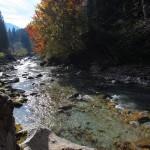 Herbst an der Großarler Ache 3