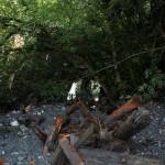 Geröll und Bäume werden von den Sperren zurückgehalten
