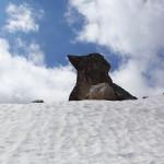 Wie ein riesiger Vogel hockt diese Steinformation oben am Grat