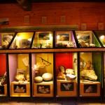 Talmuseum - Mineralienausstellung