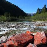 Blick auf den Ötzlsee. Die roten Steine im Vordergrund sind bewachsen von der Grünalge